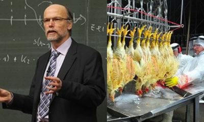 Dari Impor Rektor Hingga Impor Daging Ayam Kalian Pilih Mana. (Foto Ilustrasi)