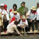Menteri LHK Siti Nurbaya bersama Iriana Joko Widodo dan Mufidah Jusuf Kalla dan sejumlah istri Menteri Kabinet Kerja Joko Widodo-Jusuf Kalla tanam Mangrove. (FOTO: Istimewa)