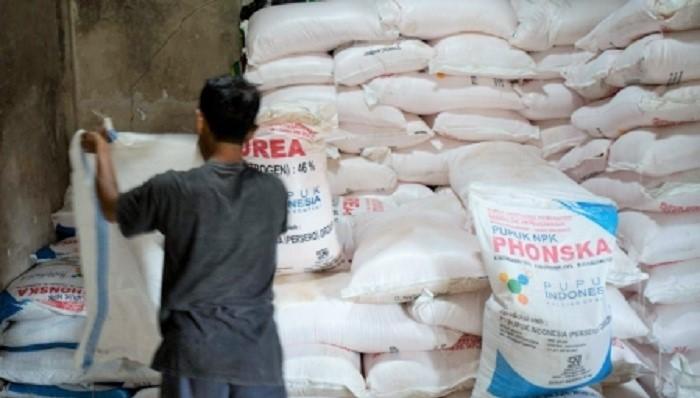 Pengawalan Distribusi Pupuk Bersubsidi untuk Petani Diperketat. (FOTO: Ilustrasi)