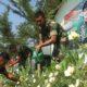 angicipi green action, filosofi humanis, manusia, lingkungan, nusantaranews