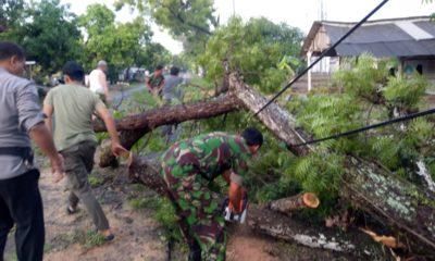 Pohon Tumbang, Personel Kembangbahu Turun Tangan