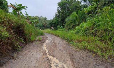Jalan poros tengah Sebatik wilayah Kawasan Strategis Nasional yang belum maksimal pembangunanya.