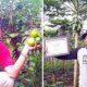 Solusi Pengentasan Kemiskinan Aceh Pasca Pidato Presiden Jokowi