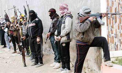 Melindungi Teroris di Idlib Bukanlah Pilihan Akal Sehat