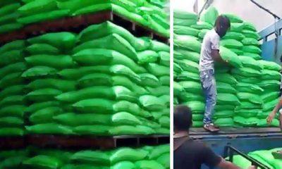 Dewan Jatim bongkar penimbunan gula di Lamongan, kinerja Disperindag Jatim diragukan.