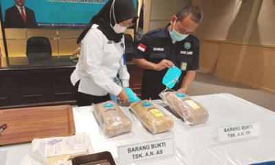 Tangkap dua pengedar di tengah Covid-19, BNNP Jatim amankan ganja seberat 1.911 gram.