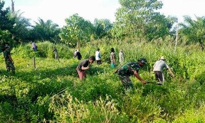 Wujudkan ketahanan pangan, Satgas Pamtas Yonif 623/BWU buka lahan bersama masyarakat