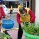 Polres Palopo panen hasil budidaya program ketahanan pangan
