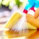 Mengenal produk pembersih yang menjadi andalan ibu rumah tangga.