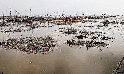 Infrastruktur pesisir tak terurus, Pemprov Jatim disebut abaikan perintah undang-undang. Anggota Komisi B DPRD Jatim Rohani Siswanto, merasa prihatin