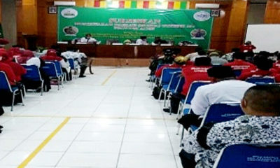 Semangat Perjuangan Menjadi PNS Tanpa Tes GTKHKNK 35+ Provinsi Aceh