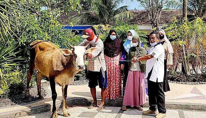 Politisi Demokrat bagikan 4 sapi untuk keluarga terdampak Covid-19.