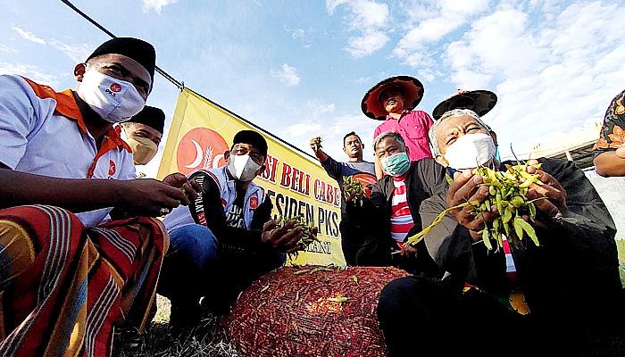Bantu Sejahterakan Petani Garam dan Cabai, Presiden PKS Borong Garam dan Cabai Petani